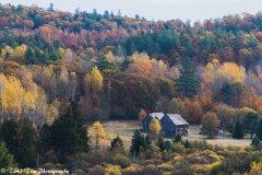 Fall Colours in Quebec